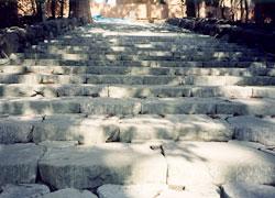自然石による多自然川づくり 環境石材・販売・施工